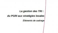 La gestion des TRI du PGRI aux strat�gies locales : El�ments de cadrage